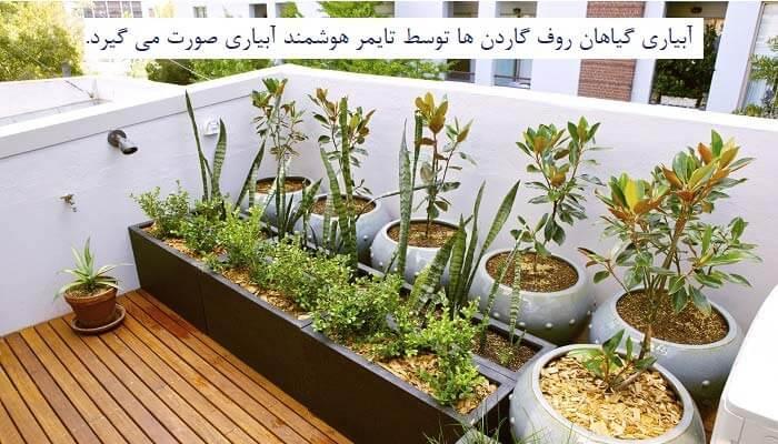 آبیاری گیاهان روف گاردن ها با تایمر آبیاری